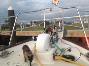 Ming and Pema enjoying exploring the boat this morning