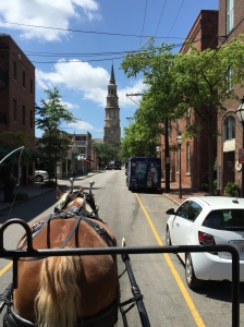 Carriage ride through historic downtown Charleston